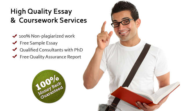what is tv essay writing services