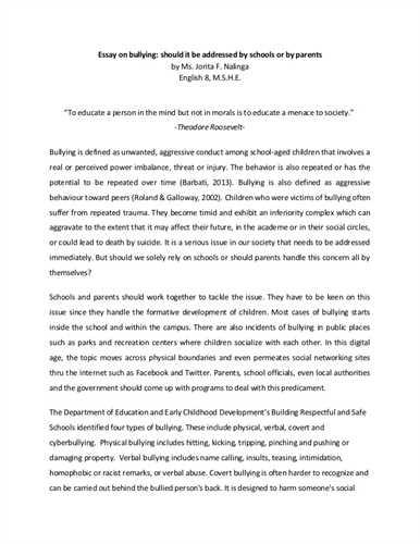 reflective essay on usa
