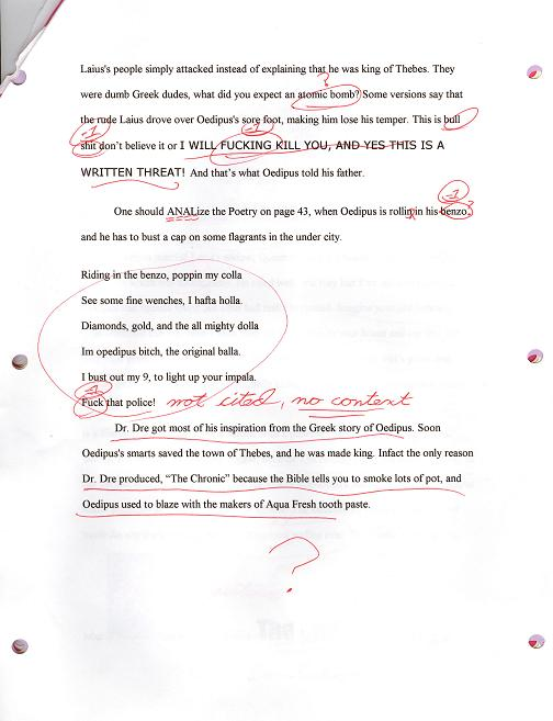 funny essays college homework help and online tutoring  funny essays