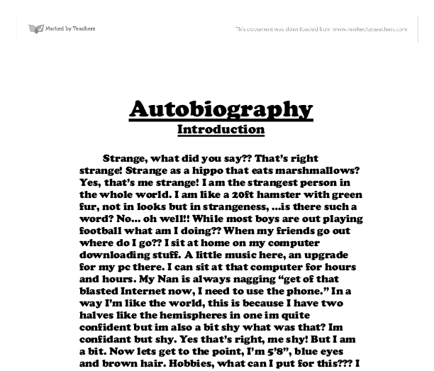 Autobiography essay example for college