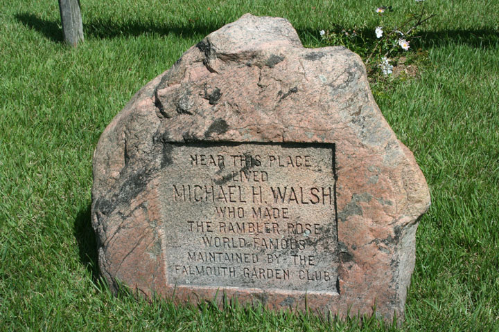 Plaque in Walsh Memorial Garden at WHHM. Photo by Gretchen Ward Warren