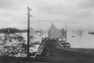 Catboats in Little Harbor, c. 1910, right. The Harrison's house may be seen in the left background (chimneys). (Sarah Bryant Fay photo)